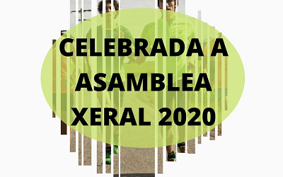 CELEBRADA A ASAMBLEA XERAL ORDINARIA DE XEITO TELEMÁTICO – 30/06/2020